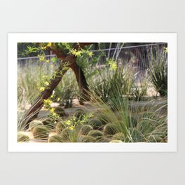 Sunnyland Gardens Scene Palo Brea in Foreground Art Print