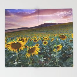Wonderful Sunflowers. Pink Sunrise Throw Blanket