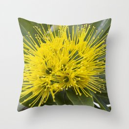 Penda Throw Pillow