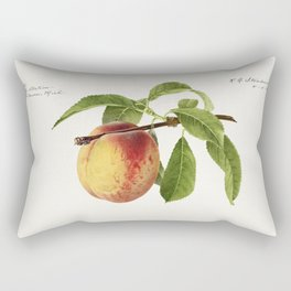 Peach twig (Prunus Persica) (1918) by Royal Charles Steadman Rectangular Pillow