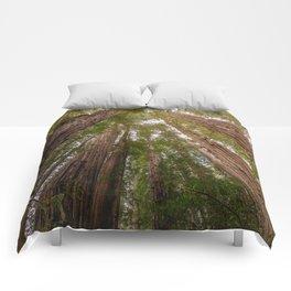 Among Giants - 59/365 Comforters