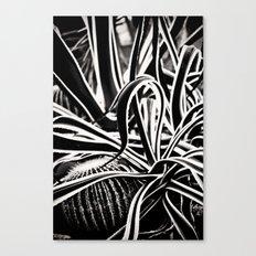 Jaggered Canvas Print