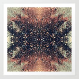 The Enchanted Forest No.9 Art Print