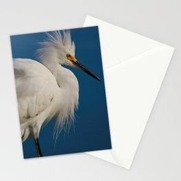 Unspoken Expectations Stationery Cards