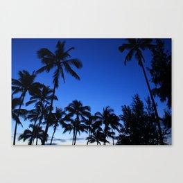 Palm Gardens Canvas Print