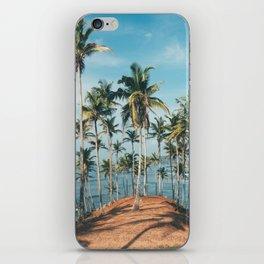 Palm trees 4 iPhone Skin