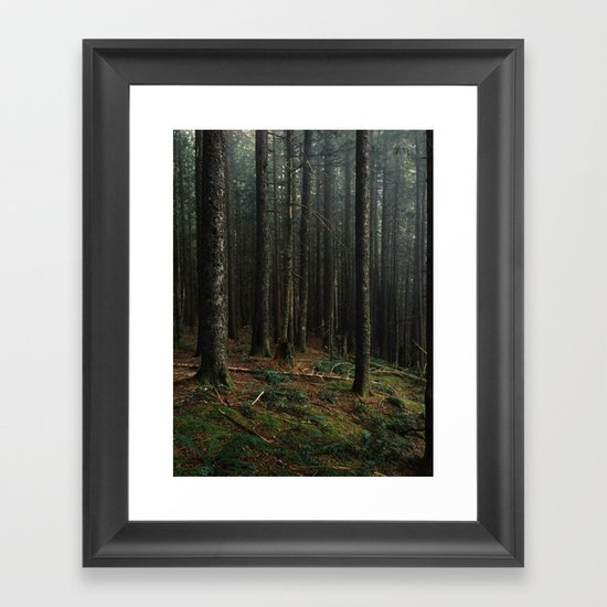 Gorge Woods Framed Art Print