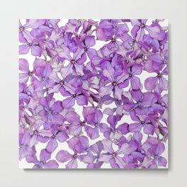 Purple Honesty Flowers Metal Print
