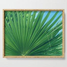 Fan Palm Leaf Against Azur Blue Sky Serving Tray