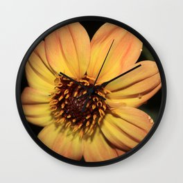 Blooming Bright Sun Flower Wall Clock