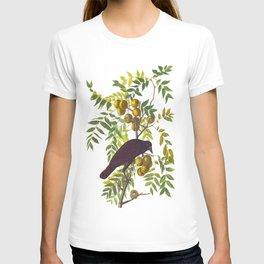 American Crow Hand Drawn Illustrations Vintage Scientific Art John James Audubon Birds T-shirt