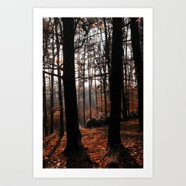autmnous twilight forest scene Art Print