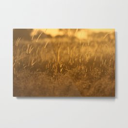 Okavango Savanna Metal Print