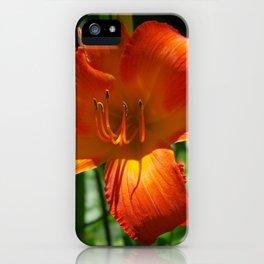 Fiery Daylily Flower - Hemerocallis 'Coleman Hawkins' iPhone Case