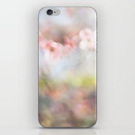 Dogwood Tree 2 iPhone Skin
