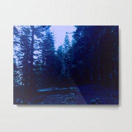 0417 Metal Print