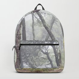 Forest dance. Into the foggy woods. Backpack