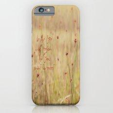Be Slim Case iPhone 6s