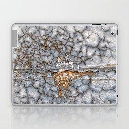 013 Laptop & iPad Skin