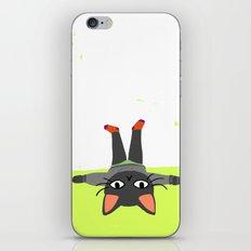 Sunday Funday iPhone & iPod Skin