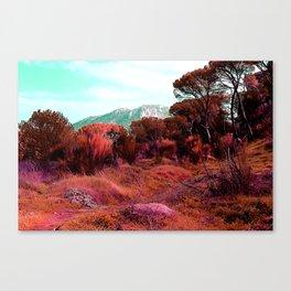 Red bright pink and orange alien landscape Canvas Print