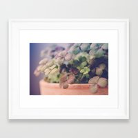 clover Framed Art Prints featuring Clover by Juste Pixx Photography