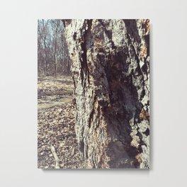 Peeking from behind the tree Metal Print