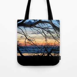 Tree Silhouette Against the Sunset Tote Bag