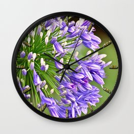 Agapanthus (African Lily) Wall Clock