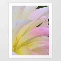 water color Art Prints featuring Water Color by I am mof