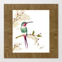 hummingbird Canvas Prints featuring hummingbird by Ariadne