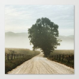Cades Cove Tree of Life Landscape Photograph Gatlinburg Tennessee Canvas Print
