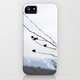 Mansfield iPhone Case