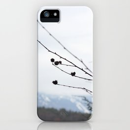 Mansfield iPhone Case