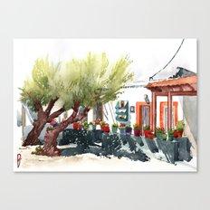 Front garden in Haraki Canvas Print