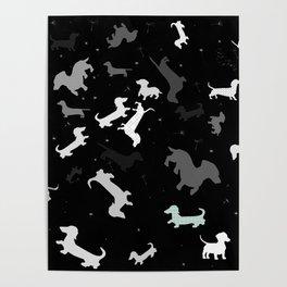 dachshund dog constellation Poster