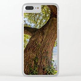 An old crooked oak tree Clear iPhone Case