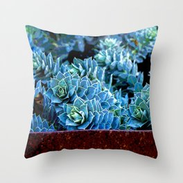 EUPHORBIA #3 Throw Pillow
