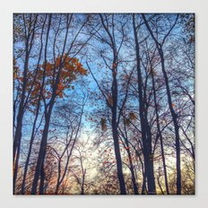 squared trees Canvas Print