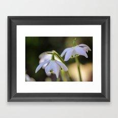 Little woodland stars Framed Art Print