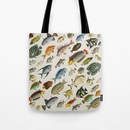 vintage fish swim on bone Tote Bag