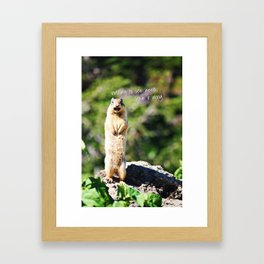 Angry Squirrel Has A Friend Framed Art Print