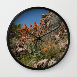 Desert Wildflowers & Cacti in Spring Wall Clock