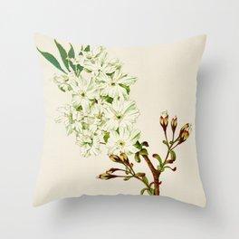 Gyoi-ko or Robe Yellow Cherry Blossoms Throw Pillow