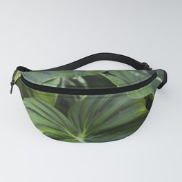 Philodendron Gloriosum Fanny Pack