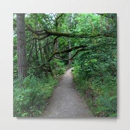 Hiking Mount Pisgah Metal Print