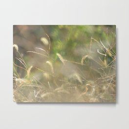 Nature Is My Greatest Inspiration Metal Print