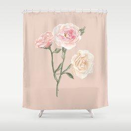 Vintage Watercolor Rose Blush Tones Shower Curtain