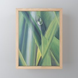 A drop of water Framed Mini Art Print