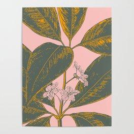 Modern Botanical Banana Leaf Poster